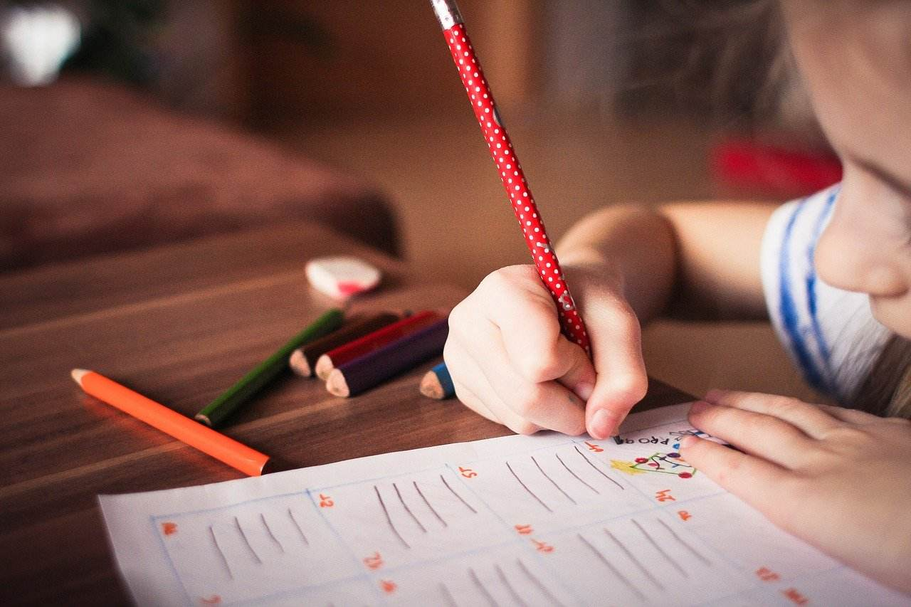 Setor educacional cresce na pandemia